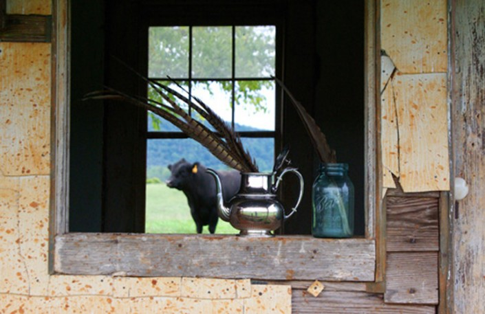 Bull Session - Photo by Blair Jackson