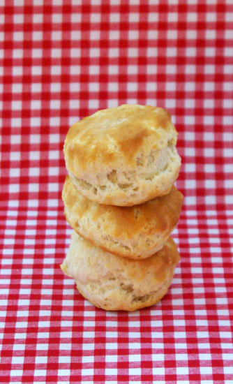 Biscuits - Photo by Blair Jackson