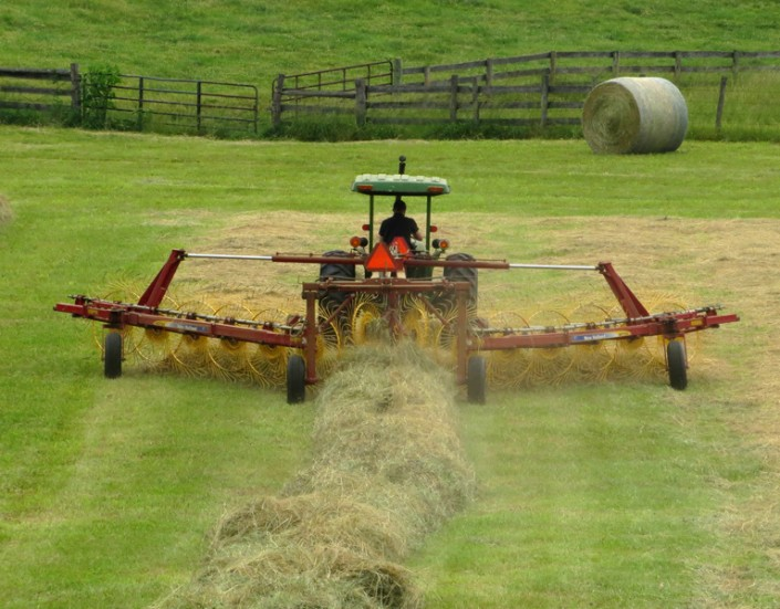 Hay Making 2 - Photo by Blair Jackson