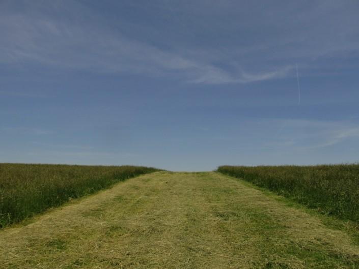 Low Farm Ridge - Photo by Blair Jackson