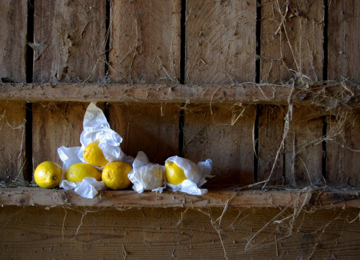 Still Life with Lemonds 1 - Photo by Blair Jackson