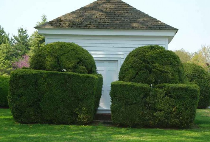Symmetrical Plantings - Photo by Blair Jackson