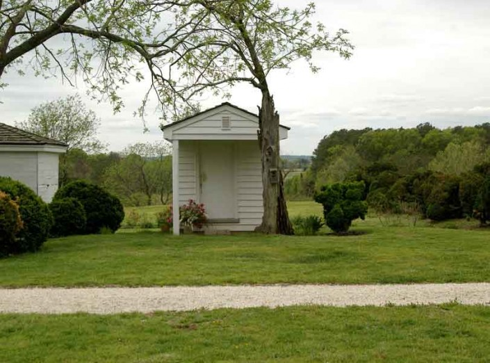 Very Small House with Tree - Photo by Blair Jackson